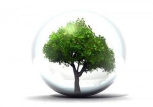 environnement_2
