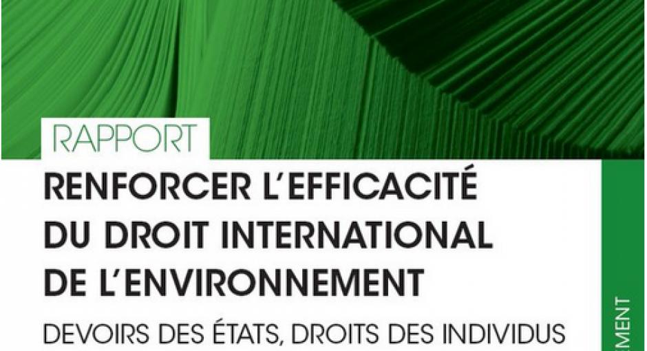 Rapport «Renforcer l'efficacité du droit international de l'environnement – Devoirs des Etats, droits des individus»